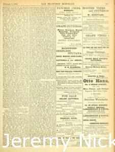 1884-02-01 Advertisement by H. W. Crabb for grape cuttings