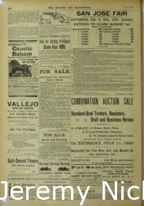 1895-07-06 Advertisement for the combination auction sale