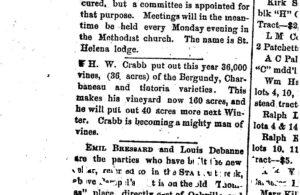 Newspaper article discussing how H.W. Crabb put out this year 36 acres of Bergundy, Charbaneau amd tintoria varieties